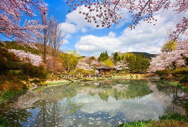 50 Tempat Wisata Menarik Di Korea Selatan  Wisatalova